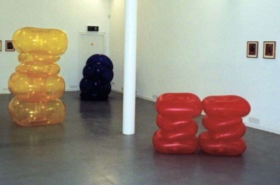 Micky Donnelly Installation Fenderesky Gallery 1996